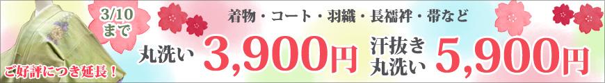3/10まで!丸洗いフェア