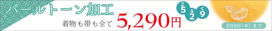 パールトーン加工5,290円